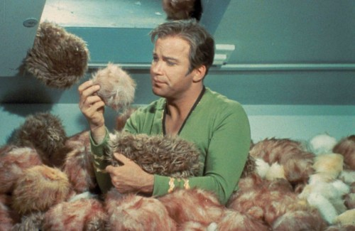 Do you know what you get if you feed a tribble too much?
